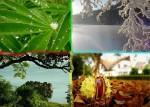 Zmiany w naturze a doświadczenia życiowe