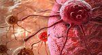 Nowa, obiecująca metoda leczenia białaczki oparta na immunoterapii