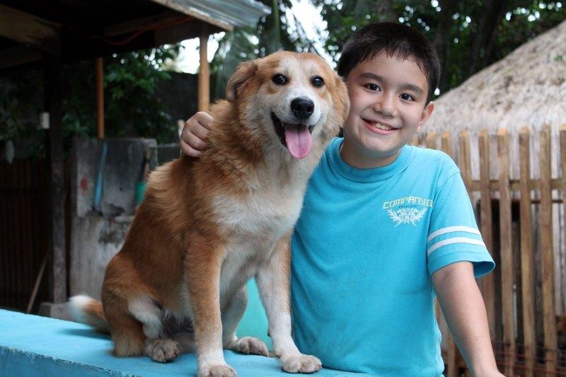 W wieku 8 lat założył schronisko dla zwierząt, teraz pomaga mu cały świat