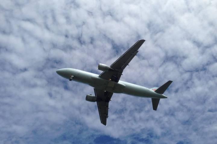 Pilot przekierował lot, by uratować psa przed zamarznięciem