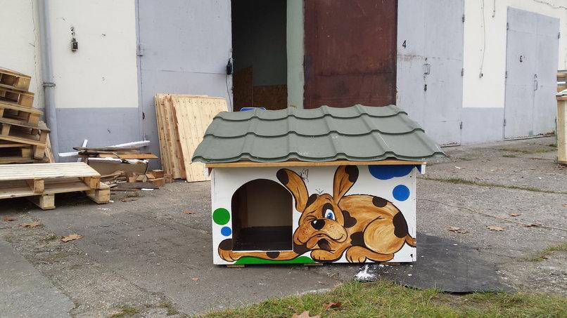 Bezdomni robią budy dla bezpańskich psów i kotów
