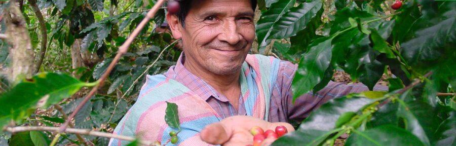 Sprawiedliwy handel (FAIR TRADE) – szacunek dla ludzi, stojących za produkcją