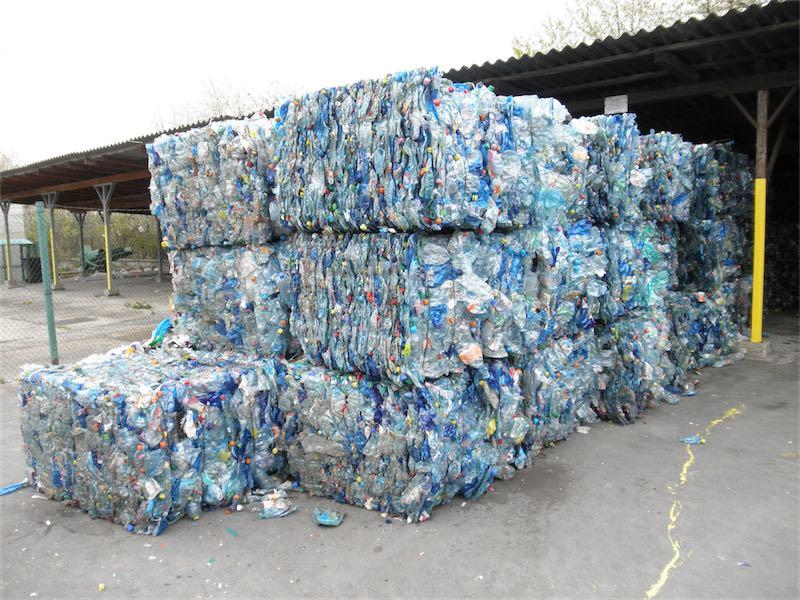 """Ideonella sakaiensis – bakterie, które """"jedzą"""" plastik … doskonałe rozwiązanie dla zanieczyszczonej Ziemi"""