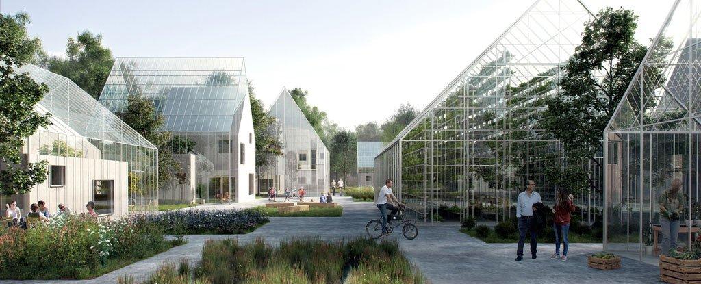 Duńczycy stworzyli projekt samowystarczalnej wioski położonej z dala od cywilizacji
