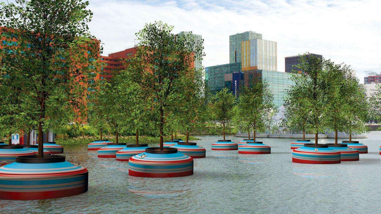 Dryfujący las rośnie w porcie Rotterdam