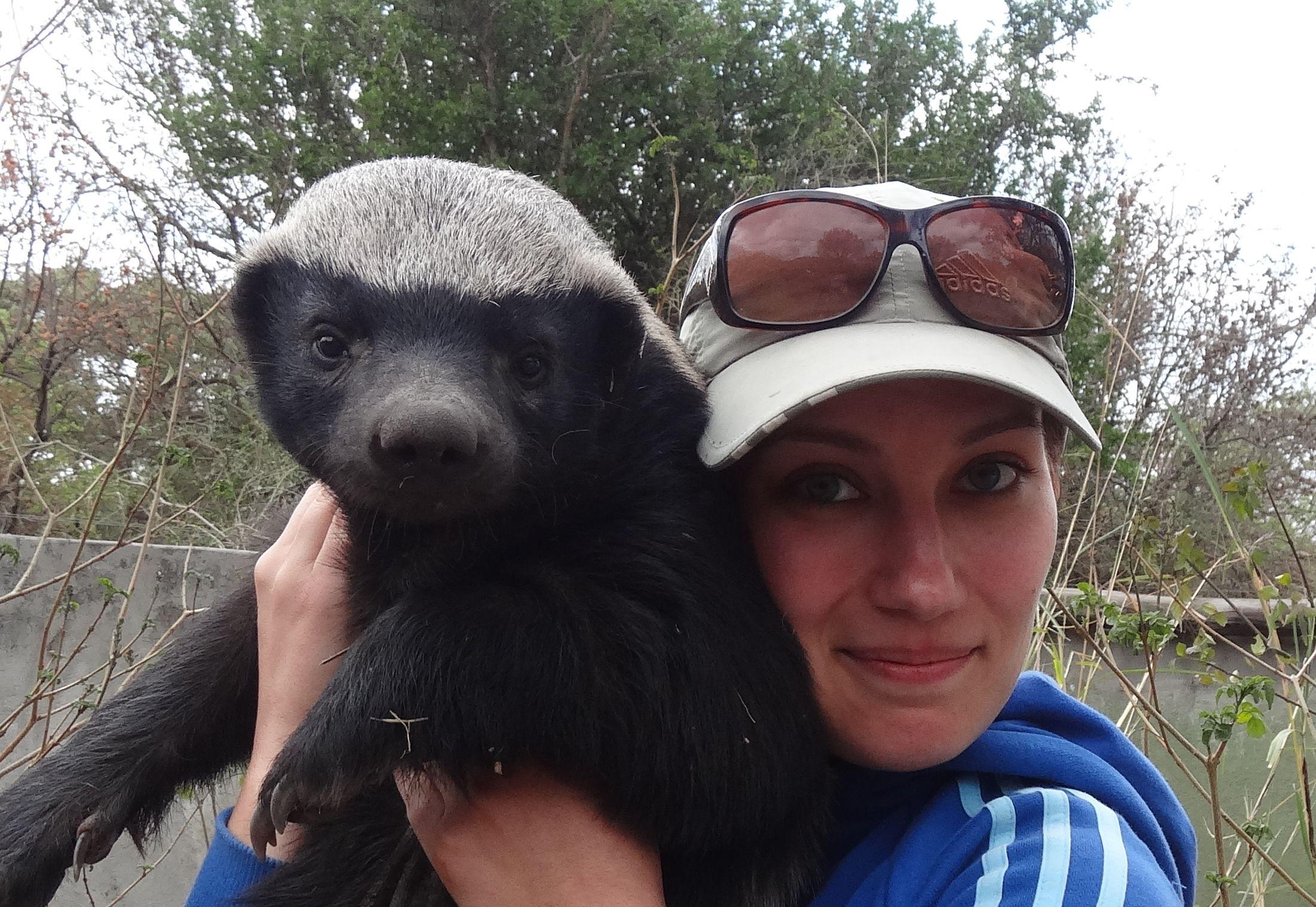 Polska Dr Dollitle przytula gepardy, miodożery i wilki