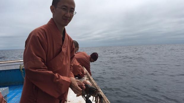 Mnisi kupili 270 kg żywych homarów, aby wrzucić je z powrotem do oceanu