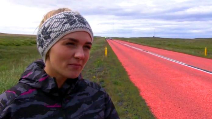 Kolorowe drogi ratują życie ptakom na Islandii