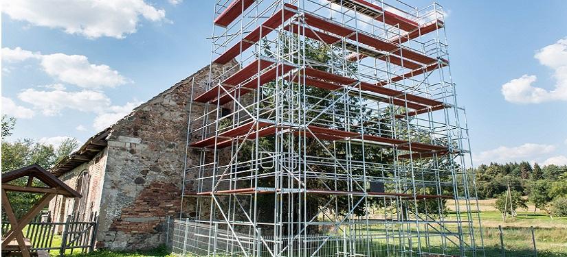 Wielka akcja ratowania najstarszego drzewa w Polsce