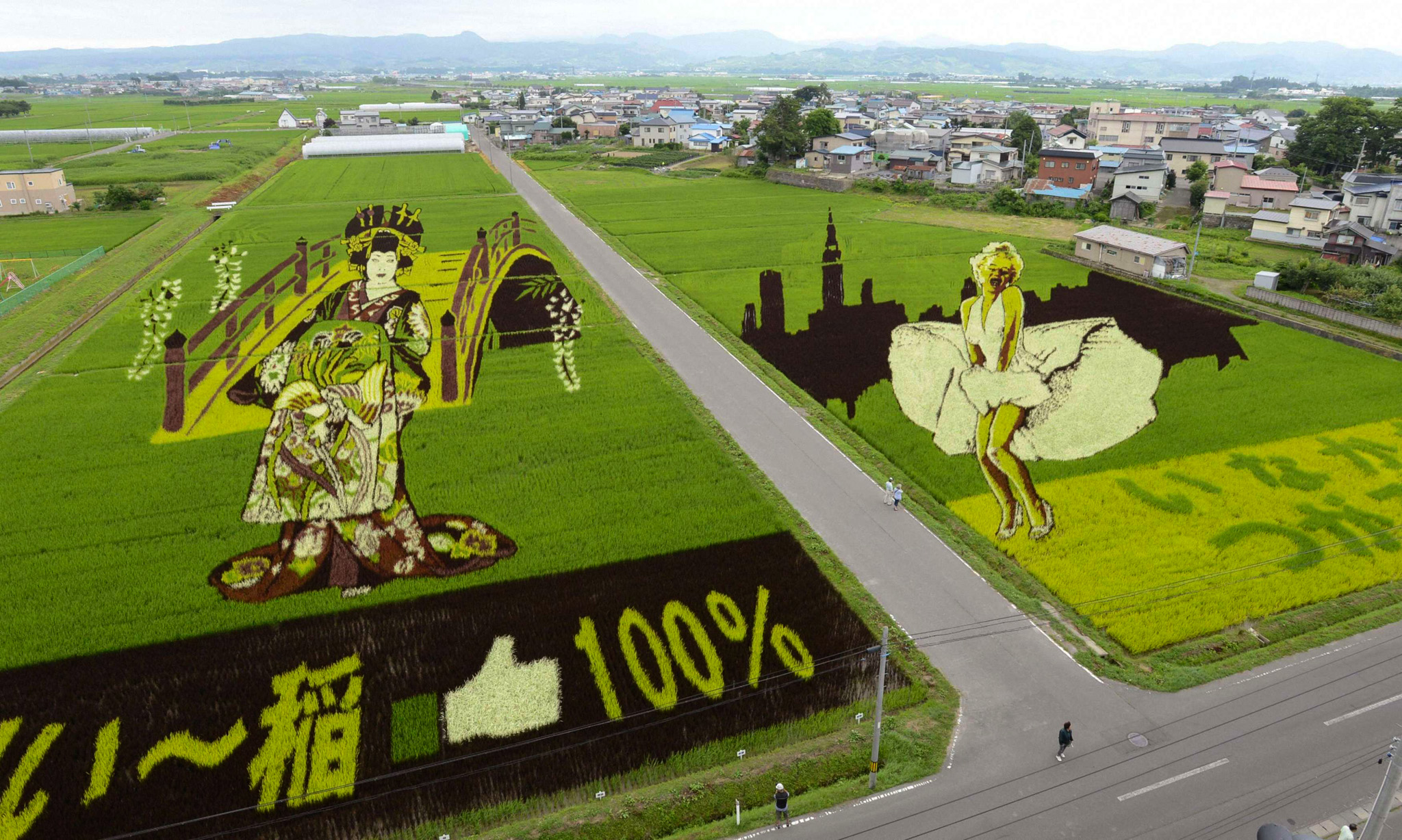 """An aerial view is seen of several kinds of rice plants depicting a Japanese """"Oiran"""" (L) or traditional courtesan and actress Marilyn Monroe at the rice fields in Inakadate town, Aomori prefecture, in this photo taken by Kyodo July 19, 2013. The annual event, knows as """"Tanbo art"""" or rice field art, is a project in which people plant different kinds of rice to create a giant picture in rice fields. REUTERS/Kyodo (JAPAN - Tags: AGRICULTURE SOCIETY TPX IMAGES OF THE DAY) FOR EDITORIAL USE ONLY. NOT FOR SALE FOR MARKETING OR ADVERTISING CAMPAIGNS. THIS IMAGE HAS BEEN SUPPLIED BY A THIRD PARTY. IT IS DISTRIBUTED, EXACTLY AS RECEIVED BY REUTERS, AS A SERVICE TO CLIENTS. MANDATORY CREDIT. JAPAN OUT. NO COMMERCIAL OR EDITORIAL SALES IN JAPAN. YES"""