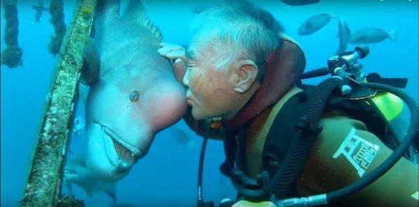 Niezwykła, trwająca 25 lat przyjaźń, między człowiekiem i rybą