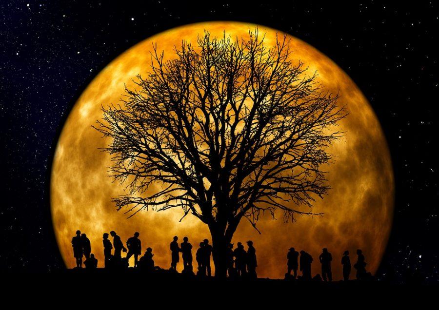 Dzisiejszy wieczór i noc będzie nie lada gratką dla astronomów i marzycieli patrzących w gwiazdy