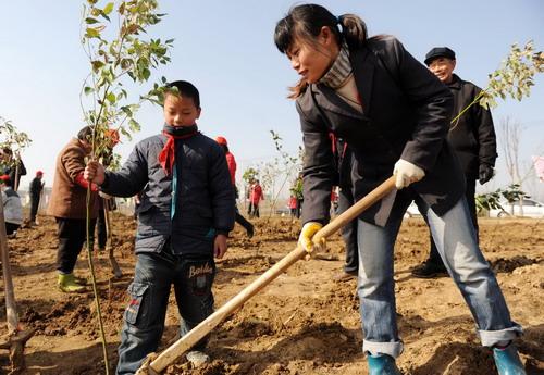 Chiny: masowe sadzenie drzew pomysłem na walkę ze smogiem