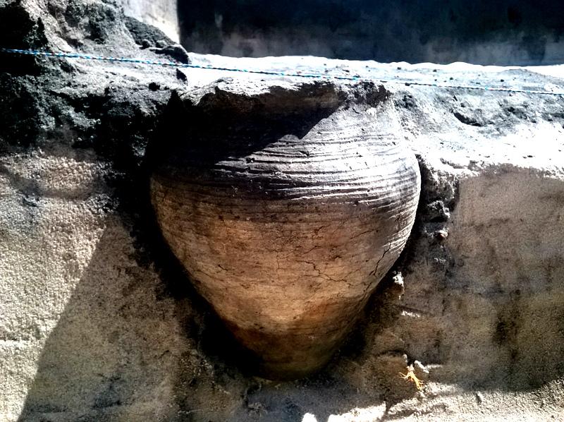 Kwaśna polewka w glinianym garnku została zakopana pod podłogą domu w Grodzisku Żmijowiska pod Kazimierzem Dolnym. To chyba najstarsza zupa w Polsce!