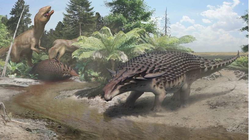 W ubiegłym roku świat ujrzał zdjęcia prawdopodobnie najlepiej zachowanego dinozaura w historii. Teraz w końcu opublikowano opis tego cennego okazu