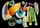 Ziarenka piasku pod mikroskopem – zaskoczy was ich różnorodność