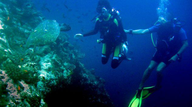 Powstało urządzenie umożliwiające rozmowy pod wodą