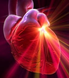 Serce jest około 5 000 razy silniejsze magnetycznie niż mózg