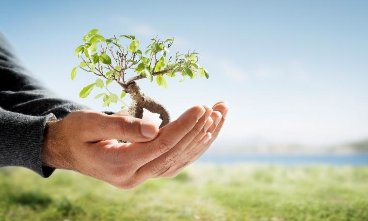 14 sposobów na wspaniałe ekologiczne życie!