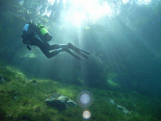 Park, który latem zmienia się w jezioro. Zobacz niesamowite zdjęcia szmaragdowego Gruner See