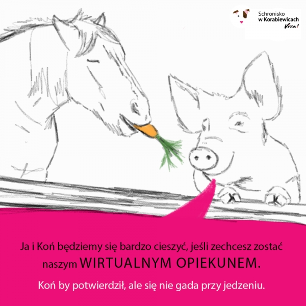 Wirtualna adopcja i sponsoring zwierząt korabiewickich