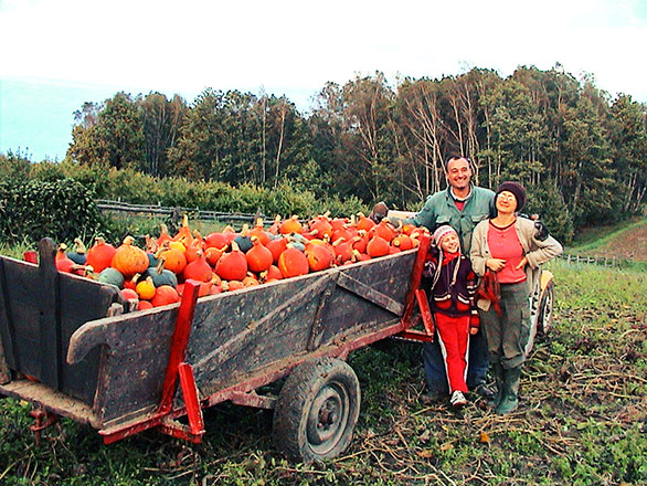 Gospodarstwo ekologiczne – droga do brzozowego gaju