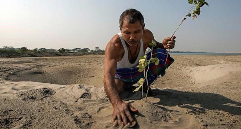 Mężczyzna, który własnymi rękoma zasadził na pustyni las