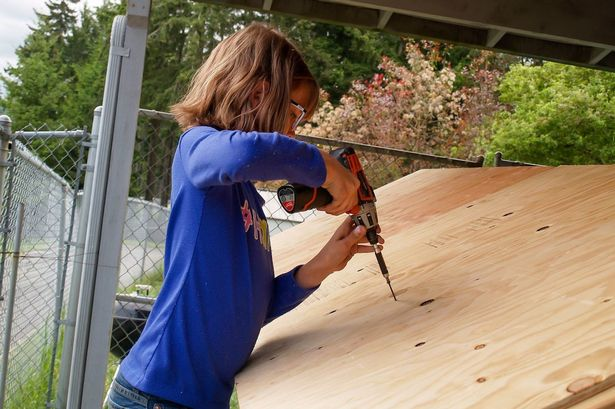 9-latka buduje małe schroniska dla bezdomnych